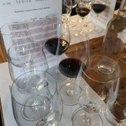 MasterClass Jacikova vinica